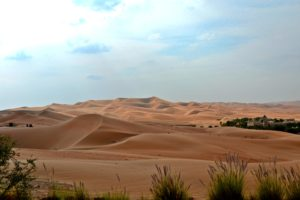 Best Hotels: Qasr Al Sarab Desert Resort by Anantara